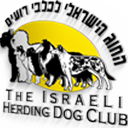 Star of David Kennel, Star of David dogs, White Swiss Shepherd Israel, White Shepherd, White Shepherd dog